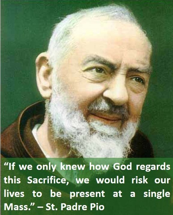Padre Pio Quotes Custom 346 Best Quotes Stpadre Pio Images On Pinterest  Catholic Quotes . Review
