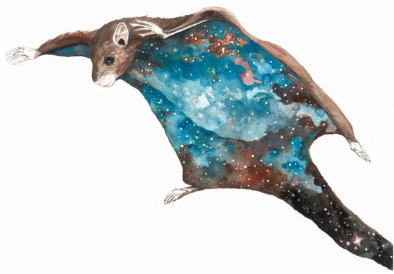 Pin By Molly Boyd On Tattoo Ideas: Celestial Ghost Flying Squirrel. 10.5 X 13.5 In. Hand