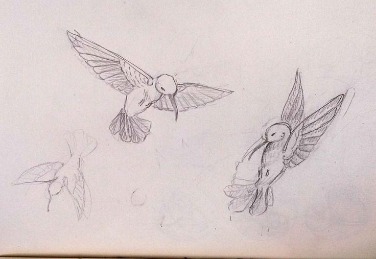 Ébauches de colibri en plein vol.
