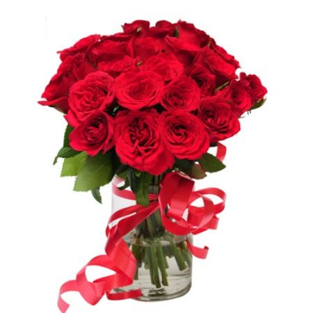 Learn More About Online Flowers, http://www.belltreeforums.com/member.php?108799-numgum&tab=aboutme#aboutme, Flowers Delivery,Cheap Flowers,Cheap Flower Delivery