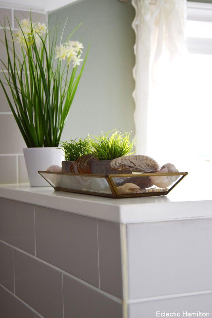 Pflanzen für mein Badezimmer und Einblicke (… endlich mal wieder!)