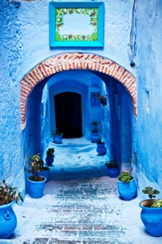 Arquitetura marroquina com paredes rústicas e de cores vivas: Ideas For, Beautiful Doorways, Adorable Animals, Colors, Outdoor Locations
