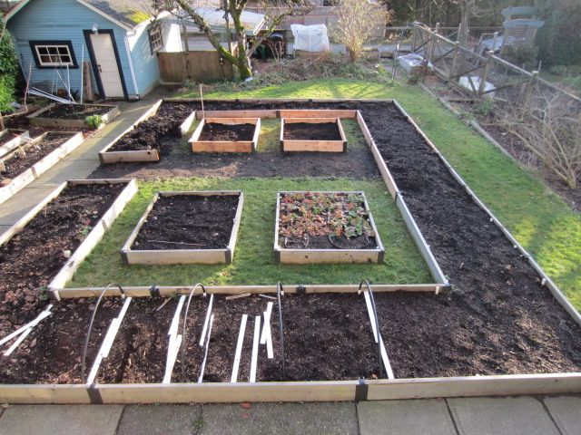Raised garden bed layout idea (via LouiseM at folia) Saving this for reference in case I expand the veg garden again.