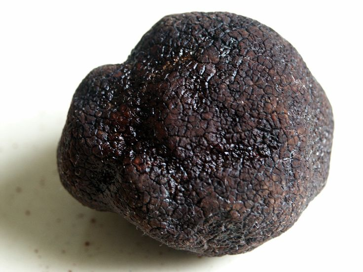 Truffles Oil is outstandingly energetic to be opening her truffle store in Melbourne and Sydney. The sources of vastest and freshest extent of dim truffles consistently from WA, NSW, VIC and TAS For more detail log onto our site.