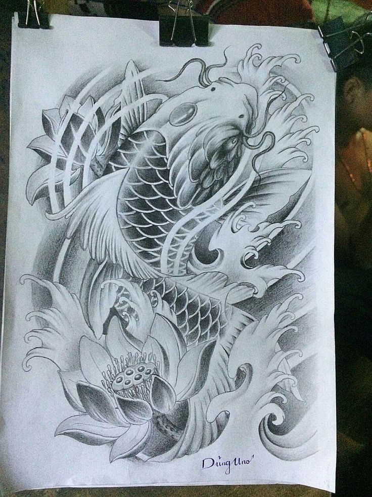 Koi Fish Design..