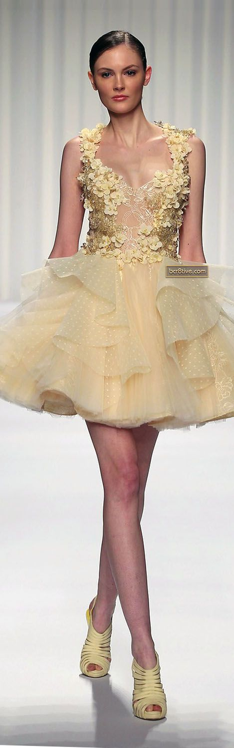 Abed Mahfouz Couture Spring Summer 2013  Not that I could or would ever have a reason to wear something like this, but I still love it!