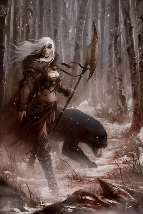 Warrior Woman And Panther