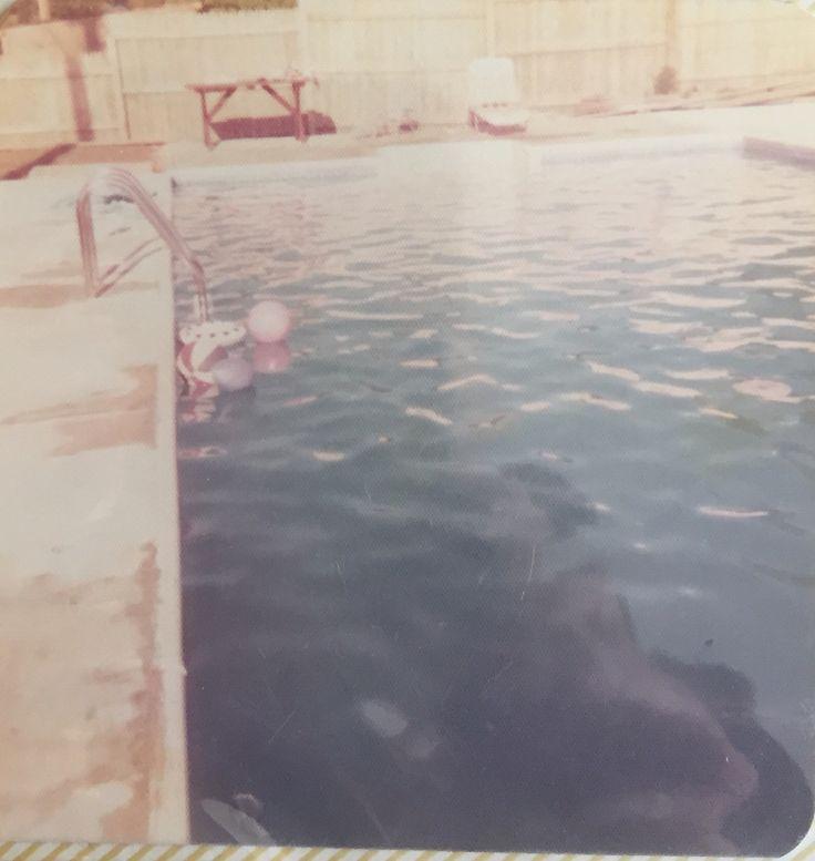 34 Best Pool Images On Pinterest Nebraska Pools And Swimming Pools