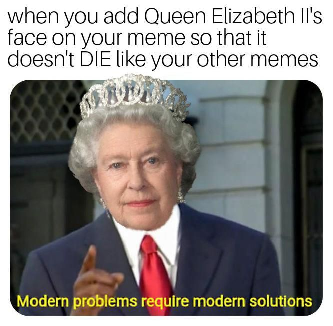 The Only Solution Stupid Funny Memes Bad Memes Stupid Memes