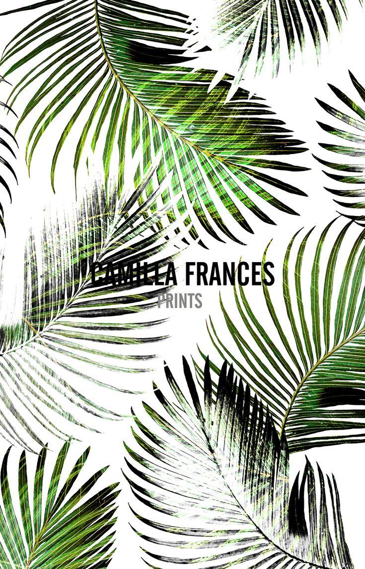 { tropical - palm leaf print } Camilla Frances Prints