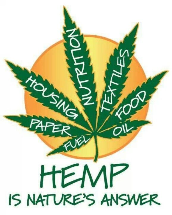 Image result for hemp is happening