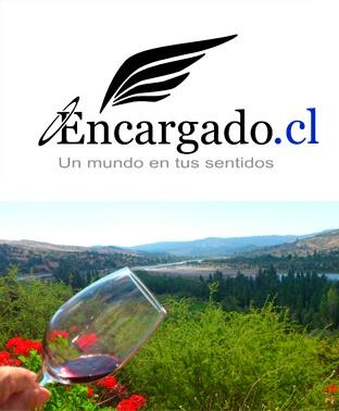 Vino ahumado, Sector Maule, Viña González Bastás; Chile