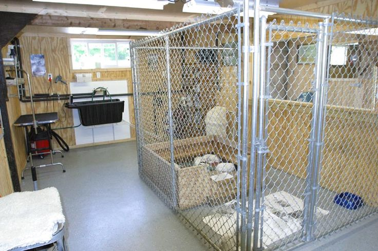 Whelping house area dog kennel ideas pinterest house for Building dog kennels for breeding