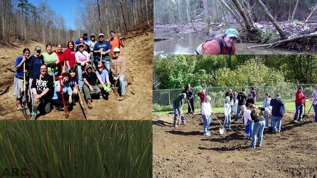 ARC #4: Wetlands Restoration, 17 x 17 Campaign