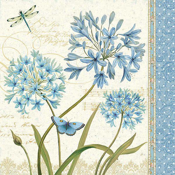 Blue Melody IV  by Daphne Brissonnet - Art Print Framed & Unframed at www.framedartbytilliams.com