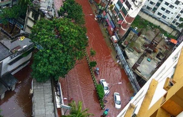 Seram! Usai Idul Adha Bangladesh Berubah Jadi Lautan Darah