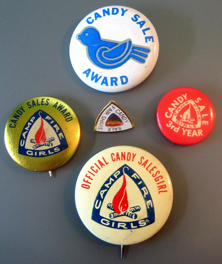 Camp Fire and Blue Bird pins