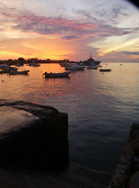 Galapagos Islands #Vacation #Travel #Galapagos http://maupintour.com/tour/galapagos-islands-journey-tour