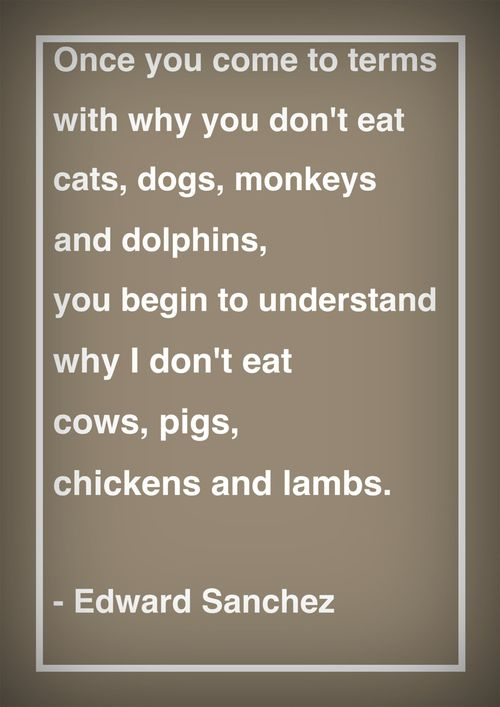 Once you come to terms with why you don't eat cats, dogs,monkeys, and dolphins, you begin to understand why I don't eat cows, pigs, chickens, and lambs.  - Edward Sanchez