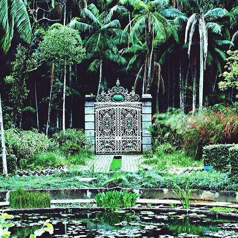Jardim Botânico de São Paulo, para quem gosta de natureza, um passeio imperdível dentro da cidade.