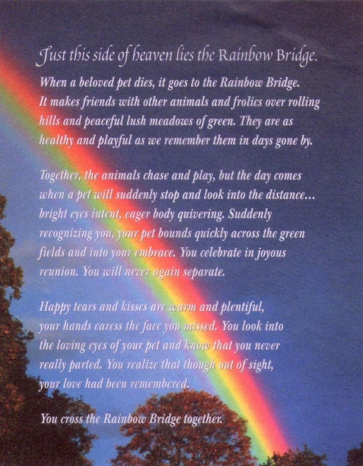 16 best images about Rainbow bridge on Pinterest   Lost ... Rainbow Bridge