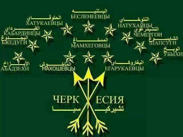 Circassian Flag. My last name Shapsig-is second on a 2nd row from the right.