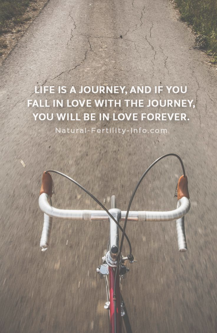 Life is a journey, and if you fall in love with the journey, you will be in love forever.   #fertilityinspirations #inspirationalquotes #NaturalFertilityInfo