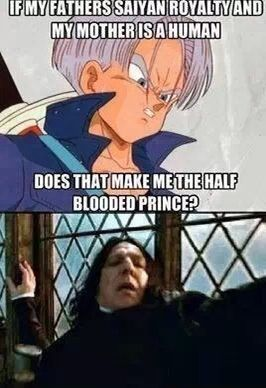 I don't like the fact that Trunks is Severus...