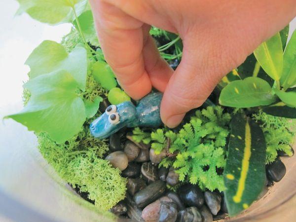 Where the Dinosaurs Roam: Make a Mini Terrarium