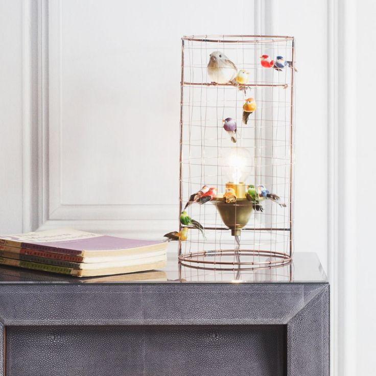 15 best Project DIY Birdcage Lamp images on Pinterest | Bird cages ...