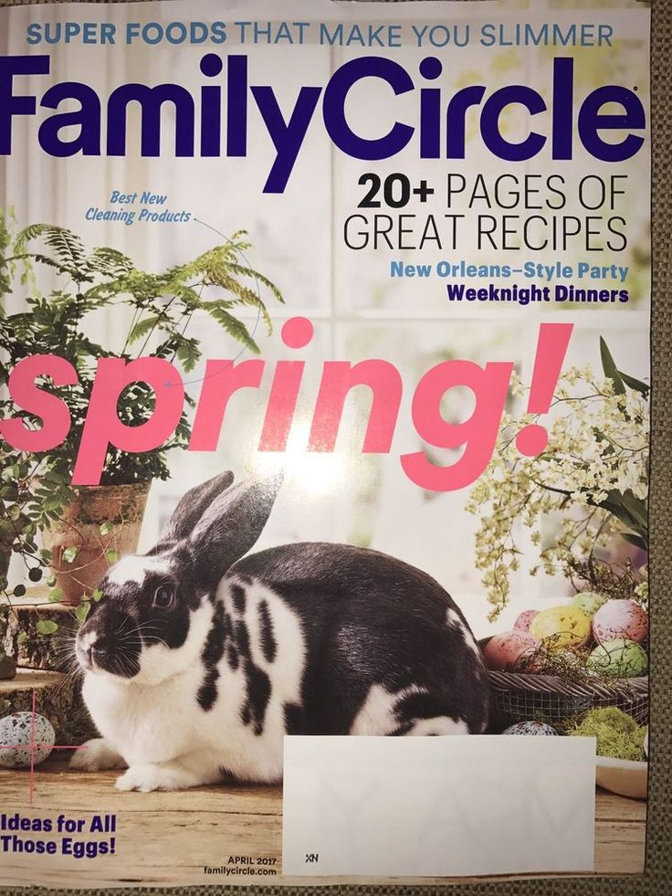 Family Circle April 2017 Spring Cleaning Products GREAT RECIPES Super Foods  | eBay