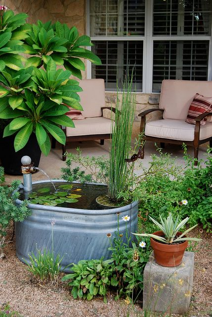 small stock tank water feature, this could be my mini pond for my mini yard!