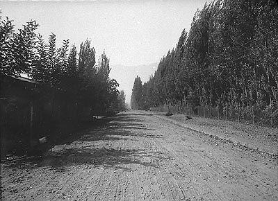 """""""Camino Bellavista Lo Cañas"""" (ca. 1920)"""