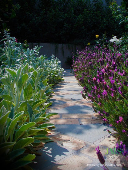 The lavender and lambs ears used here create a low tunnel of flower and scent without restricting the passage along the path.
