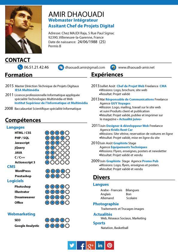 Cv Type Chef De Projet Cv Anonyme Chef De Projet Web Chef De Projet Cv Cv Type