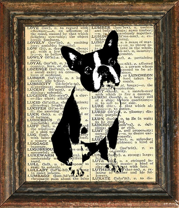 Boston Terrier print: Boston Terriers Love, Crafts Ideas, French Bulldogs, Boston Terrier Love, Cool Crafts, Cute Pet, Dogs Prints, Girls Pictures, Terriers Prints