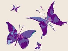 amazing- purple-butterfly-hd-pc-wallpaper