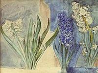 Anna Syberg hyacinter1894