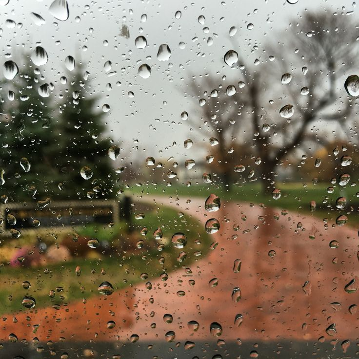 The drive through the rain.