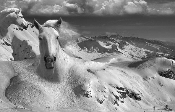 Thomas_Barbey-4