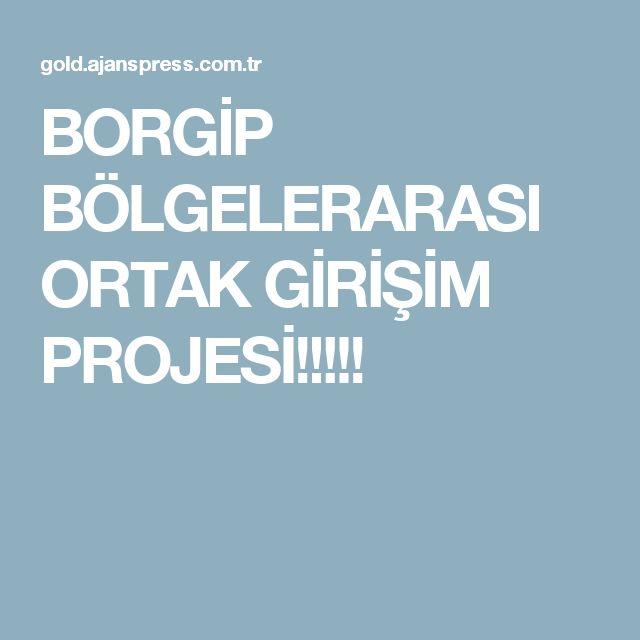 BORGİP BÖLGELERARASI ORTAK GİRİŞİM PROJESİ!!!!!