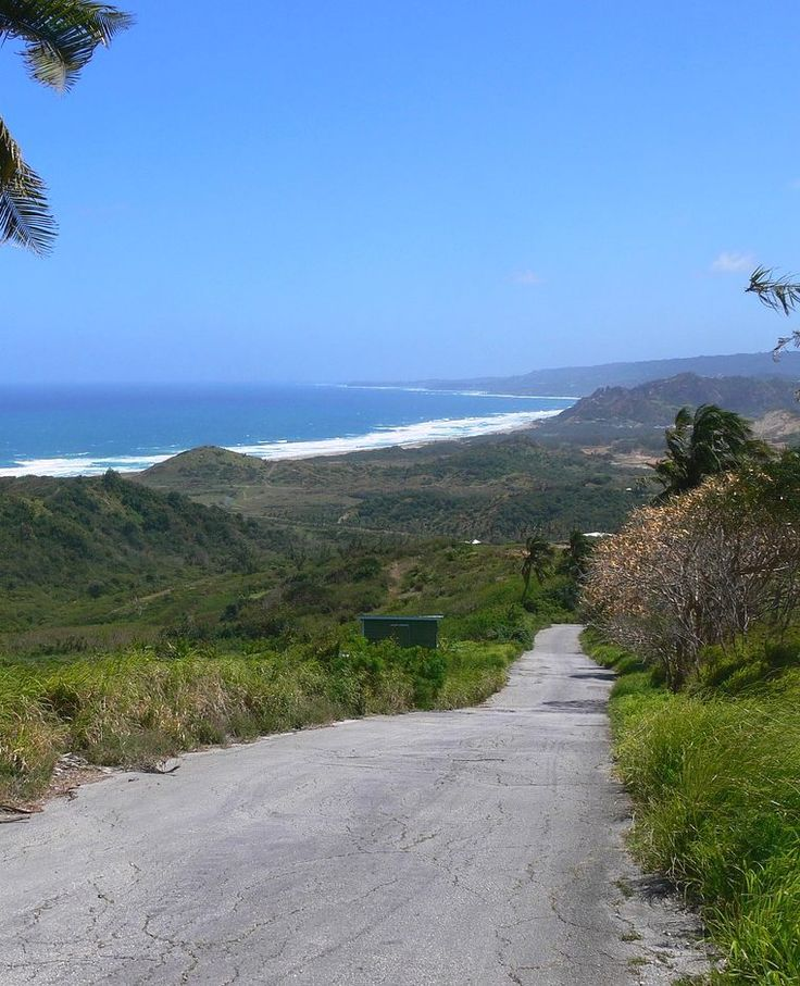 Have you traveled down (or is it up?) the mysterious Gravity Hill in Barbados?