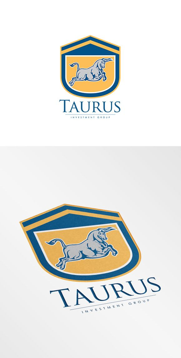 Taurus Investment Group Logo by patrimonio on Creative Market