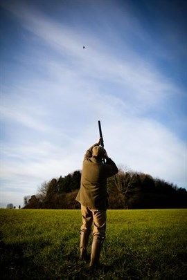 A gun shooting on a driven pheasant shoot in England