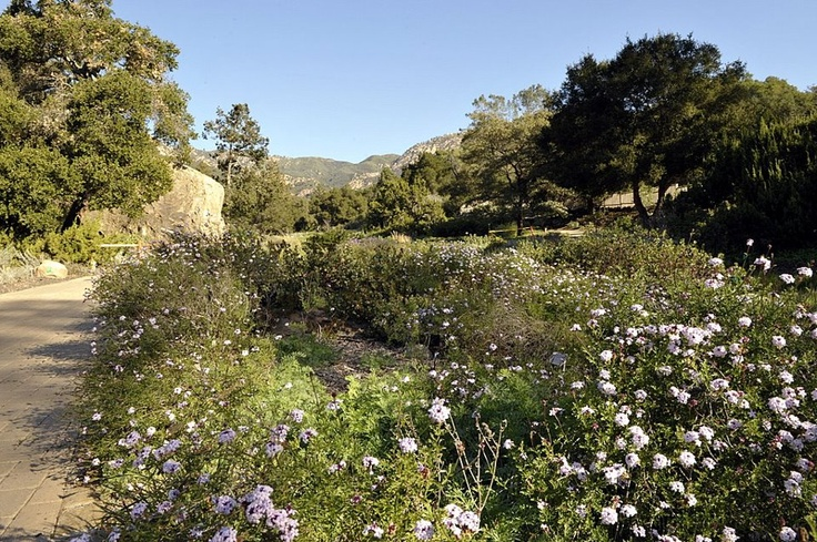 Santa Barbara Botanical Gardens Favorite Places Spaces Pinterest
