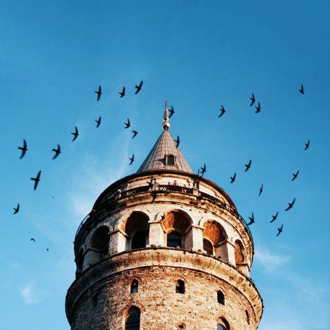 Kuşlar ve Galata için sıradan bir gündü :) #elanhotelistanbul #elanhotel #galata #beyoğlu #galatatower