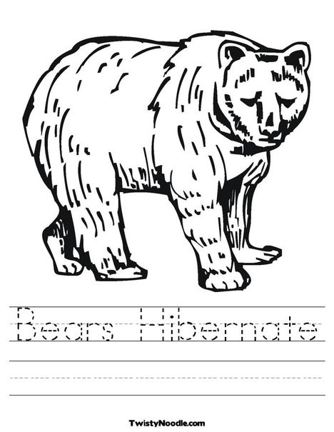 Bears Hibernate Worksheet from