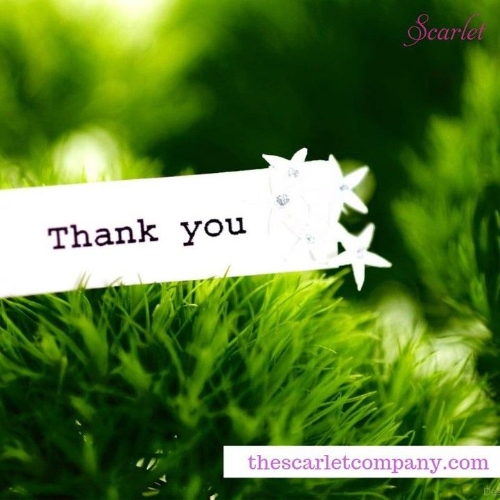 Well That S Another Fantastic Month We Really Appreciate Your Support You Are Really Doing An Amazing W Thank You Wallpaper Thank You Greetings Hd Wallpaper