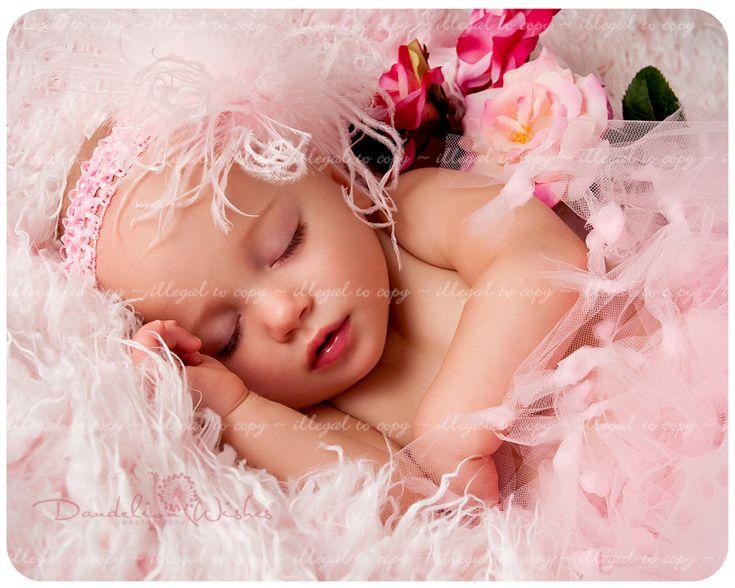 Creative newborn pictures creative baby photographer washington dc metro area sugar n