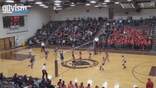 gif hard spike in volleyball. I feel bad for the guy on the side! even though its kinda funny... :)
